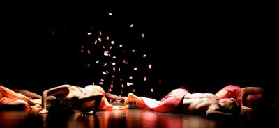 8107 Vesna Orlic  Parfum  choreolab 2008
